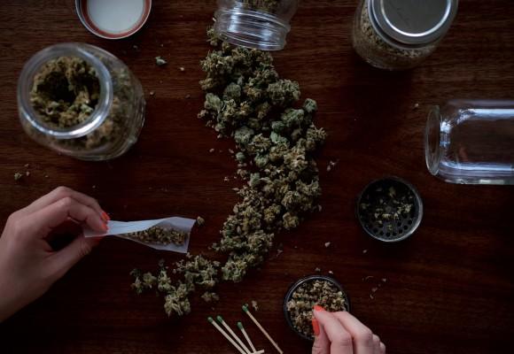 Grow indoors: tips para cultivar marihuana en interiores